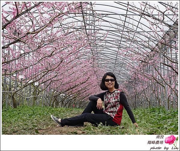 2018梅峰農場 (277)