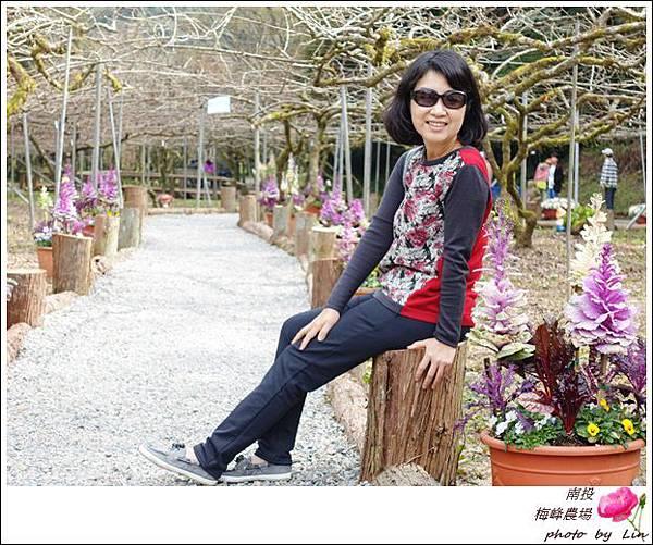 2018梅峰農場 (342)