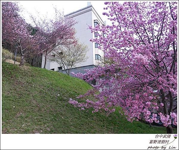 武陵富野渡假村 (39)