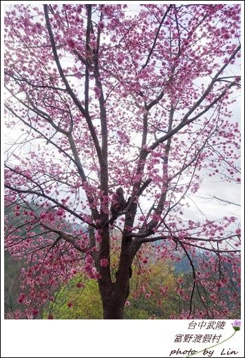 武陵富野渡假村 (33)