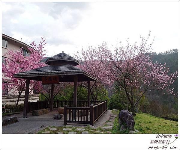武陵富野渡假村 (40)