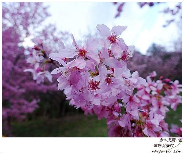 武陵富野渡假村 (32)