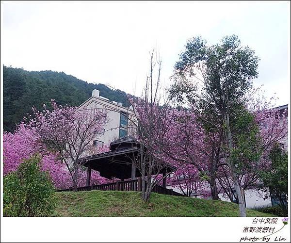 武陵富野渡假村 (25)