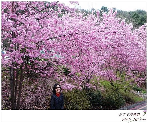 武陵農場 (26)