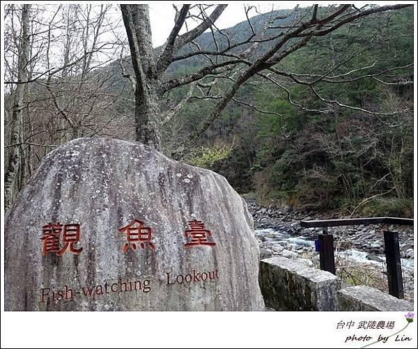 武陵農場 (36)