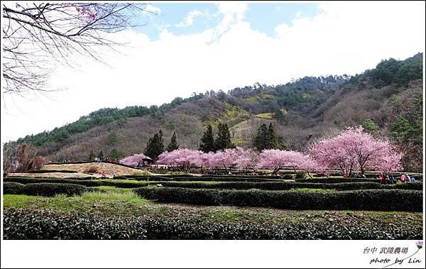 武陵農場 (282)