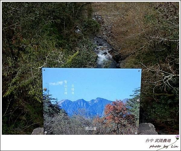 武陵農場 (294)