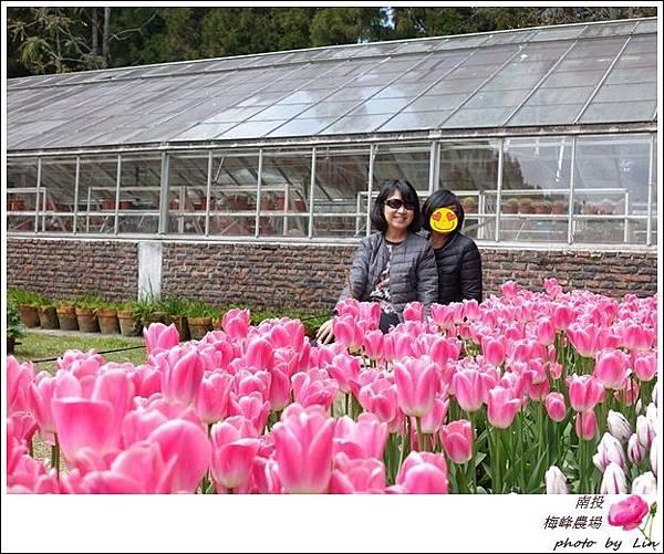 2018梅峰農場 (24)-1