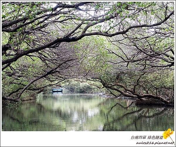 台南四草 (114)