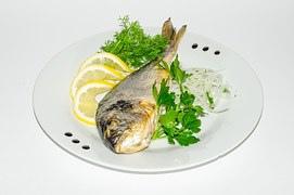 fish-762827__180.jpg
