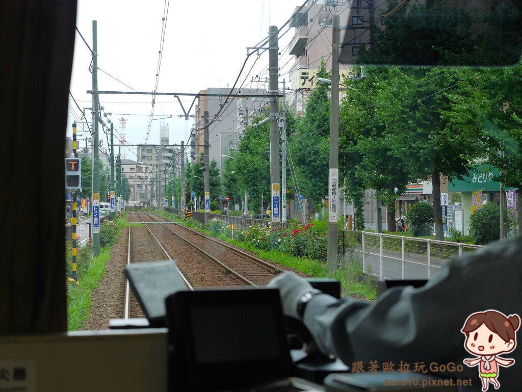 P9680863.jpg