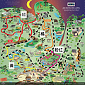 夜間動物園地圖.png