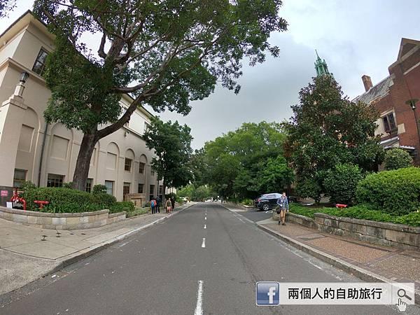雪梨大學 散步.JPG