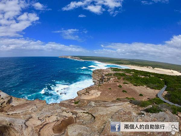 sydney royal national park.jpeg