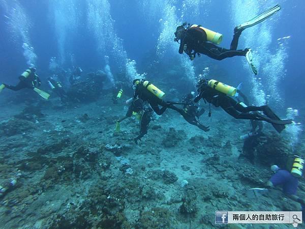 石朗 體驗潛水.JPG