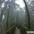 雲林 石壁 天空步道.JPG