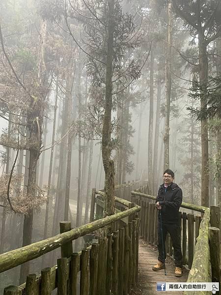 雲林 天空步道.jpeg