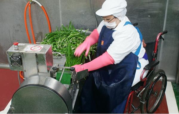切韭菜-600.jpg