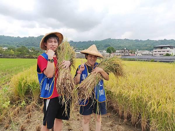 108稻米收割_觀心園_6.jpg