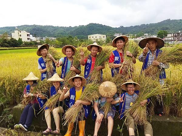 108稻米收割_觀心園_1-1.jpg