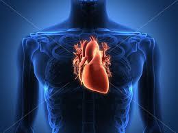 心腦血管疾病