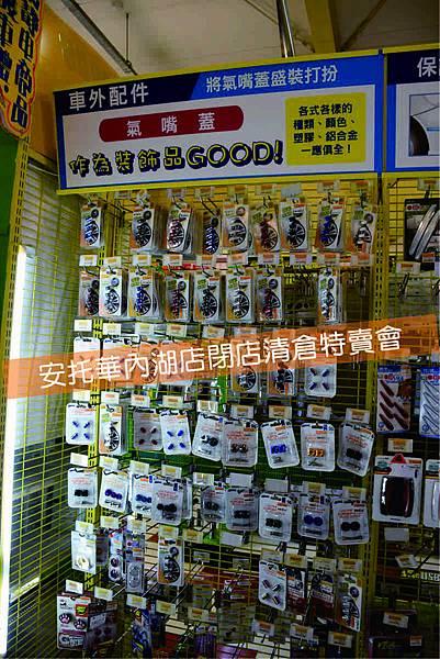 DSC_0919S.JPG