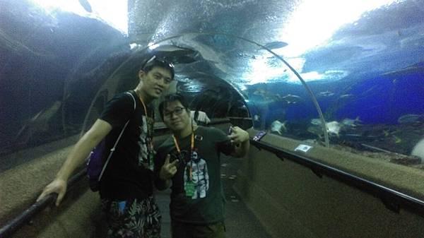 聖淘沙裡的海底世界