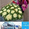 2014/12/29  換錢一定要在韓國換唷~~~