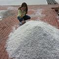 台灣鹽博物館20140330-4
