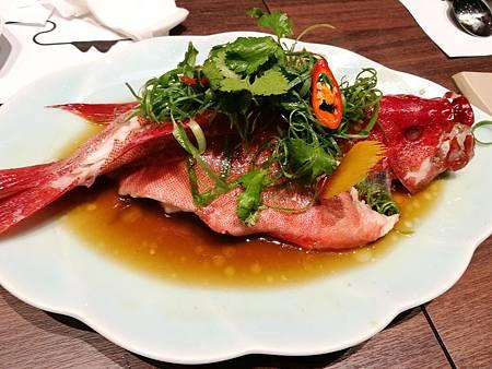 TAIKO赤沐和洋爐端燒 -鱒魚