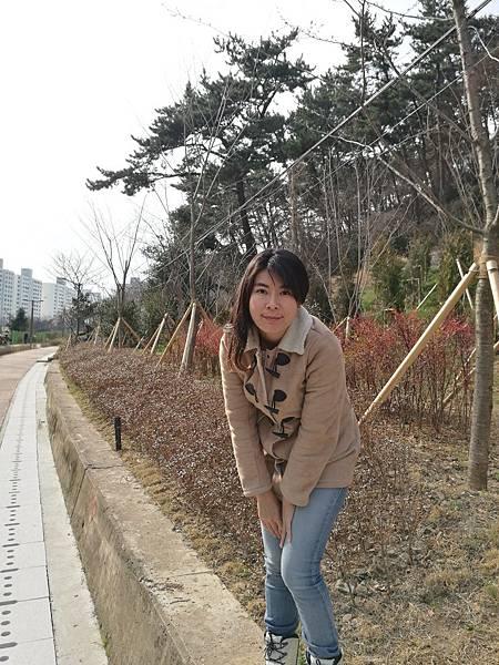 很多韓國本地人登山步道