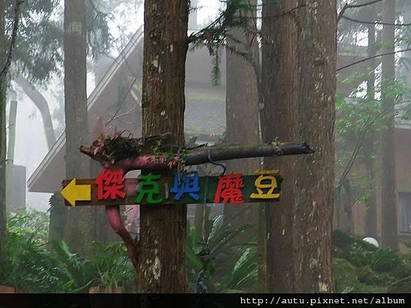 2011-03-26溪頭 190_nEO_IMG.jpg