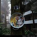 2011-03-26溪頭 075_nEO_IMG.jpg