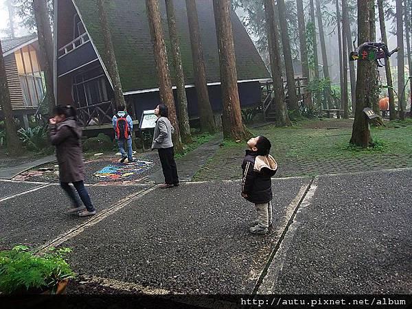 2011-03-26溪頭 174_nEO_IMG.jpg