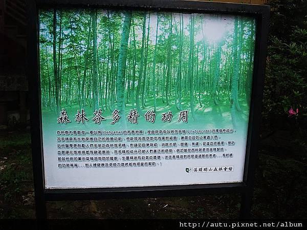 2011-03-26溪頭 118_nEO_IMG.jpg
