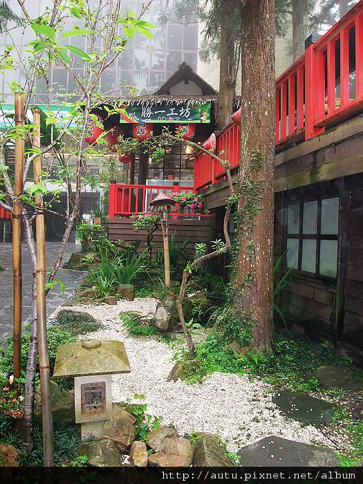 2011-03-26溪頭 035_nEO_IMG.jpg