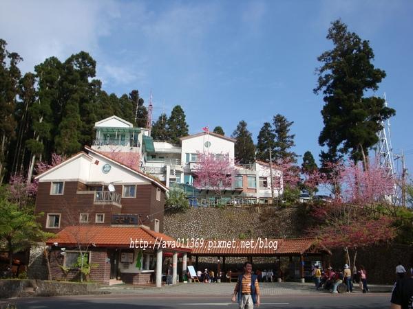 藤枝森林遊樂區入口