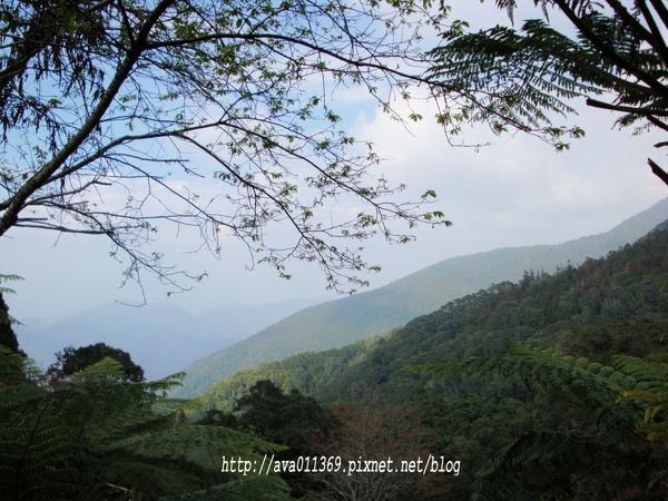 藤枝遊客中心遠眺