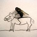 身騎白馬.jpg
