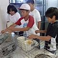 日本小孩進餐 (27).jpg