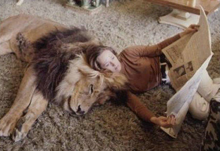 寵物獅 (2).jpg