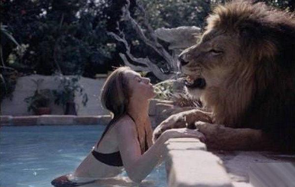寵物獅 (15).jpg