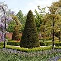 荷蘭庫肯霍夫花園與花卉市場 (8)