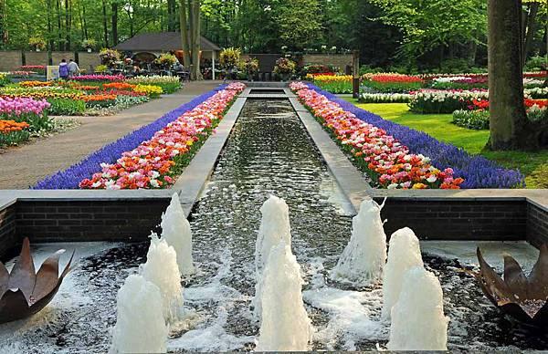 荷蘭庫肯霍夫花園與花卉市場 (11)