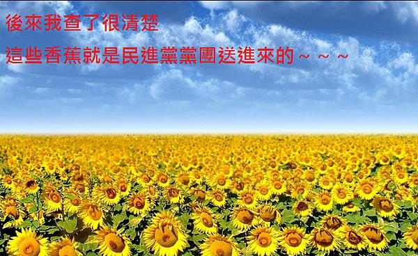香蕉你個太陽花.PNG