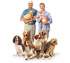 Paul Newman Pet Food