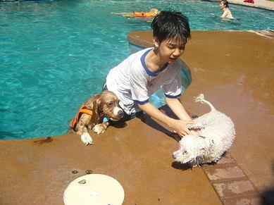 Jovi's first swim