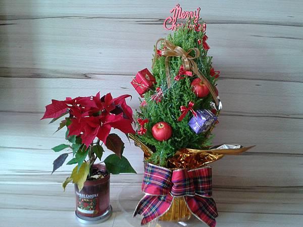 2012-12-13 聖誕裝飾
