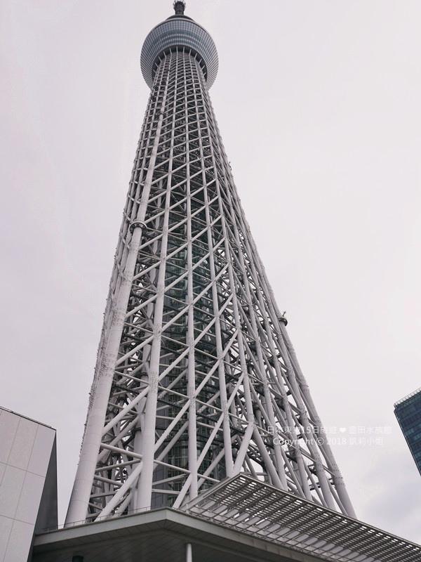 0513 (24)_副本