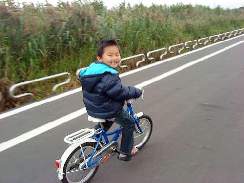 台北花卉村 (31).jpg